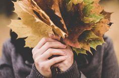 Comienza el otoño, una de mis estaciones favoritas... un momento, ¡creo que todas los son! ;) ¡Feliz transición!