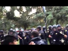 The pepper spraying incident at UCDavis