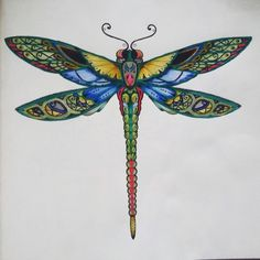 Take a peek at this great artwork on Johanna Basford's Colouring Gallery! Adult Coloring Pages, Coloring Books, Enchanted Forest Coloring Book, Dragonfly Wall Art, Tattoo Designs, Beautiful Bugs, Make Up Art, Johanna Basford, Panel Art