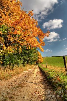 Country Road And Autumn Landscape Photograph by Michal Boubin - Country Road And Autumn Landscape Fine Art Prints and Posters for Sale Country Life, Country Roads, Photos Black And White, Autumn Scenes, Country Scenes, All Nature, Fall Pictures, Take Me Home, Autumn Inspiration