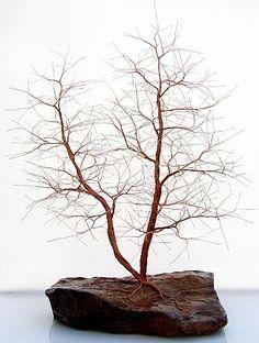 Finally a bonsai I can't kill.