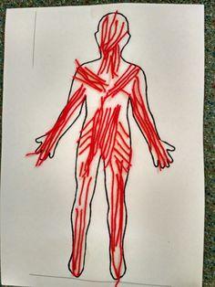 human body - muscules, children art