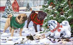 Pug - Snow Pugs -  by Margaret Sweeney