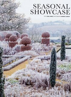 frost topiary garden Blog | Tom Stuart-Smith