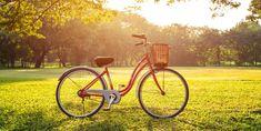 Bicycle, Google Search, Bicycles, Historia, Bike, Bicycle Kick