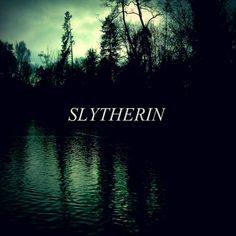 Pero viva slytherin che somos los mejores