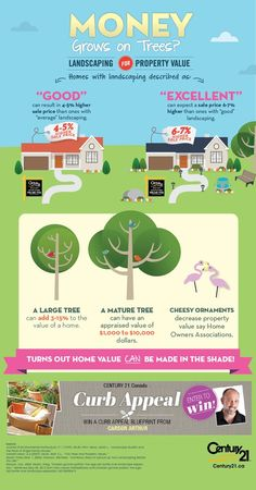 Did you know that excellent landscaping can expect a sale price 6-7% higher? Here's an infographic...