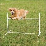 Dog Agility Bar Jump