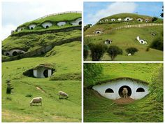 The Lord of the Rings movies are well known all over the world, and so is the village Hobbiton where the Hobbits in the trilogy were living. The beautiful little houses surrounded by amazing nature were located in Matamata in New Zealand during filming, and they still are. Now the Hobbit houses ar…