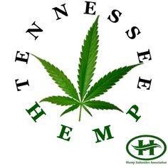 Tennessee's first Hemp farm? - Tennessee Hemp™