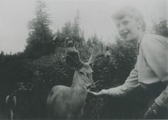 Sylvia Plath and deer.