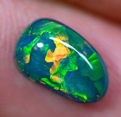 Black Opal Stones x x carats Auction Opal Auctions Black Opal Stone, Lightning Ridge, Rough Opal, Exotic Fruit, Flower Fairies, Australian Opal, Opal Auctions, Exotic Pets, Geology