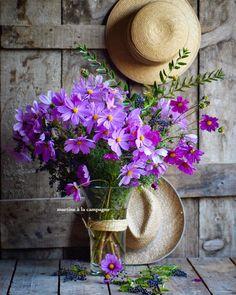 Este posibil ca imaginea să conţină: plantă, floare, pălărie şi în aer liber Beautiful Flower Arrangements, My Flower, Purple Flowers, Flower Art, Flower Power, Floral Arrangements, Beautiful Flowers, Deco Floral, Flower Photos