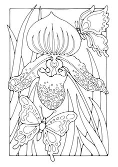 Coloring page lily with butterflies
