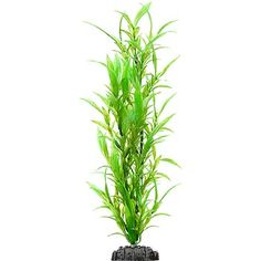Petco Background Green Plastic Aquarium Plant