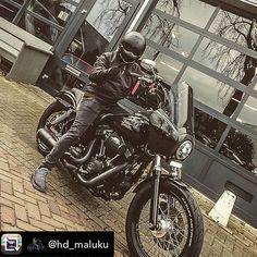 @hd_maluku