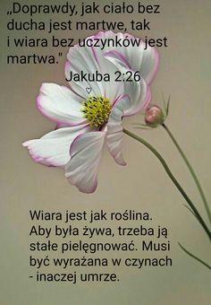 Motto, Bible, Faith