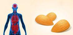Αυτό θα συμβεί στο σώμα σας εάν τρώτε 12 αμύγδαλα κάθε μέρα!