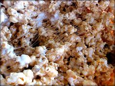 Caramel Marshmallow Popcorn | meals4moms This one uses sweetened condensed milk