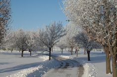 Stay active this winter by hitting the trails in Des Moines
