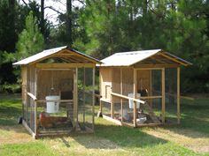 The Chicken Tractor
