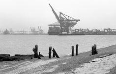 Felixstowe - View of the port