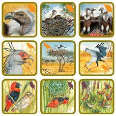Pexetrio Plus Africká savana File Folder Activities, Forest Theme, Step Kids, Animal Activities, Zoology, Forest Animals, Kids Gifts, Animals For Kids, Montessori