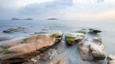 iPhone X Wallpaper Beach coral rock moss ocean horizon Wallpaper 1366768 HD 4k Download free