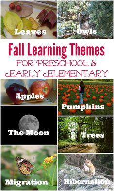 Fall Learning themes for preschool, kindergarten & elementary kids!  Great ideas for seasonal activities at home or in the classroom -- book lists, crafts and field trips for Fall.
