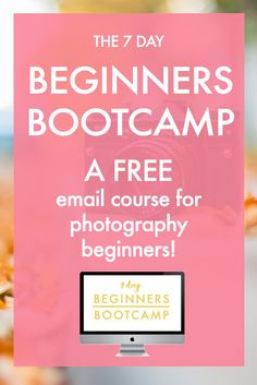 The 7 Day Beginners Bootcamp: A FREE Email Course! Learn how to blur out your background, find good light, change your focus point, use composition and a lot more! >>