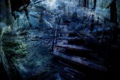 Stairway up to darkness#photography #photo #landscapephoto #digitalphotography #portait #photographyart #artphotography #johannaamnelin #Juliste #Sisustus #posters #poster #art #artposter #print #artprint #photography #photoprint #photoposter #dark #light #Finland #landscape #nature #naturephotography #canon #canoneos6d