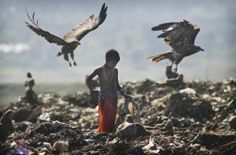 A street child searches for recyclable material in a rubbish dump in Gauhati, eastern India :BBC with no photo credits. Santa Sede, Third World Countries, Papa Francisco, Urban Life, Slums, Our World, Canoe, Bald Eagle, Indiana