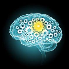 İnsan beyni Poster ✓ Kolay Kurulum ✓ 365 Gün Geri Ödeme Garantisi ✓ Bu kolleksiyondaki diğer desenleri inceleyin!
