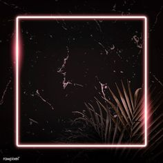 Square pink neon frame on tropical leaves background vector | premium image by rawpixel.com / manotang Pink Neon Wallpaper, Framed Wallpaper, Neon Backgrounds, Wallpaper Backgrounds, Leaf Background, Background Images, Logo Anime, Wattpad Background, Picture Templates