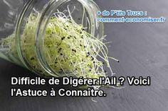 Il existe une alternative pour profiter des bienfaits de l'ail sans les problèmes de digestion. L'astuce est de consommer l'ail sous forme de graines germées. Découvrez l'astuce ici : http://www.comment-economiser.fr/difficile-de-digerer-l-ail-voici-l-astuce-a-connaitre.html?utm_content=buffer96de6&utm_medium=social&utm_source=pinterest.com&utm_campaign=buffer
