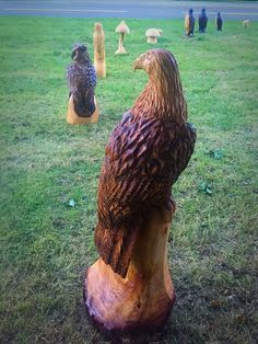 Chainsaw carved eagle out of larch
