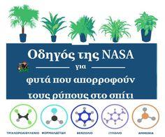 Οδηγός της NASA για φυτά που απορροφούν τους ρύπους στο σπίτι | Αλεκάτη: βότανα, μανιτάρια, τροφή, θεραπείες, συνταγές, καλλιέργεια Nasa