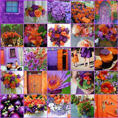 purple & orange    never thought I'd like this combo but these pictures are gorgeous