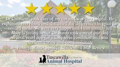 Another 5 Star Review! | The veterinarians at Tuscawilla Animal Hospital care about cats and dogs too! Call us today to schedule an appointment today! #dogs #pets #cats Veterinarians, Take Care Of Me, Save Her, Appointments, Feel Good, Schedule, Sick, Dog Cat, Stress