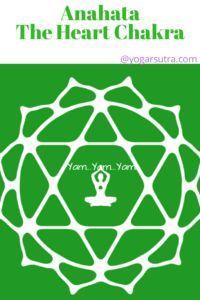 How yoga and meditation balance body chakra. Learn here heart chakra , its color, bija mantra and associated yoga poses. Body Chakras, Les Chakras, Yoga Nidra, Yoga Sequences, Yoga Poses, Healing Meditation, Yoga Meditation, Kundalini Yoga, Pranayama