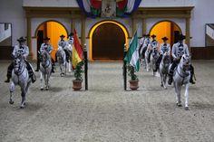 Fundacion Real Escuela Andaluza del Arte Ecuestre, Carrusel 002.jpg