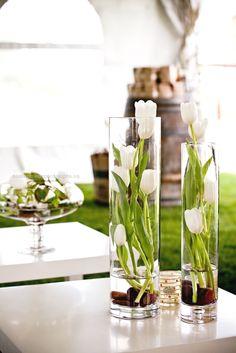 Lavish: December 2010 White tulips are also pretty standing tall! http://www.coolhomedecordesigns.us/2017/06/10/lavish-december-2010/