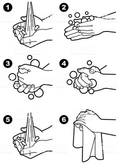 Choose from 60 top Washing Hands stock illustrations from iStock. Find high-quality royalty-free vector images that you won't find anywhere else. Hand Illustration, Free Vector Graphics, Free Vector Art, Hand Washing Poster, Hand Hygiene, Hand Sketch, Preschool Activities, Coloring Pages, How To Draw Hands