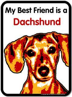 My Best Friend Is A Dachshund - and he hurt his back and I am sooooooo sad! Praying for my Lucky Boy