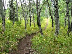 hiking trails around Salt Lake City