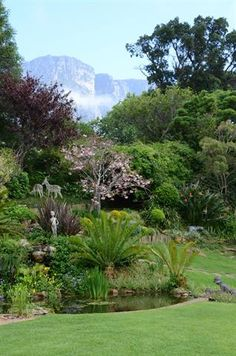Garden and Home Golf Courses, Home And Garden, Gardens, Gallery, Plants, Inspiration, Biblical Inspiration, Roof Rack, Outdoor Gardens