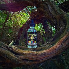 Bird Brains by Cuttwood ---  Bird Brains – Fruit Loop Cereal Flavor --  Visit:-  https://bigcloudvaporbar.ca/product/bird-brains-by-cuttwood/  If you are looking for the latest vapes and related products, Big Cloud Vapor Bar is at your service. We invite you to elevate your vaping experience by choosing the finest quality e-liquids besides top notch E Cigarettes at our store & online.  ======= ===  Big Cloud Vapor Bar 4927 Kingsway,  Burnaby, BC  V5H 2E5 604-428-8273…