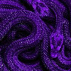 Violet Aesthetic, Dark Purple Aesthetic, Lavender Aesthetic, Rainbow Aesthetic, Aesthetic Colors, Aesthetic Collage, Aesthetic Grunge, Aesthetic Vintage, Aesthetic Pictures