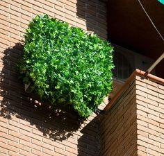 Ocultar el aire acondicionado mediante una malla verde simulando enredadera de hojas. Air Conditioner Cover, Easy Home Decor, Yard, Exterior, Outdoor Structures, Plants, Hide Air Conditioner, Gardens, Balcony