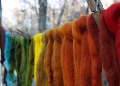 Dreams of dying my own wool, and opening a felting fiber studio in Sacratomato.